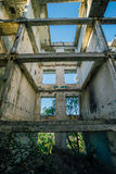 Overgrown ruins of house or industrial building, green post-apocalypse concept.  Stock Photos