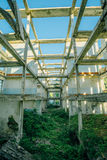Overgrown ruins of house or industrial building, green post-apocalypse concept.  Stock Image