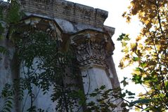 The overgrown ruins of the summer theater stock photos