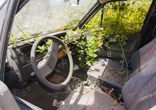 Overgrown scrapped car Royalty Free Stock Photo