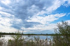 Rain clouds over the lake, overgrown the shore of the pond, inclement weather over the pond. Overgrown the shore of the pond, rain clouds over the lake stock photos