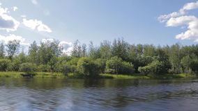 The overgrown shore of the Siberian river Konda. View from the river at speed stock footage