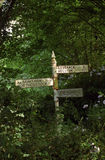 Overgrown Signpost Royalty Free Stock Images
