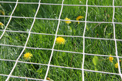 Overgrown soccer goal Royalty Free Stock Photography