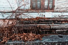 Overgrown steps in front of an abandoned house Stock Photography