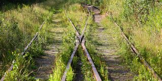 Overgrown old railway. Overgrown with thick green grass old railway stock photography