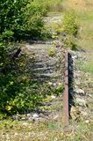 Overgrown train rails 6 royalty free stock image