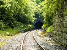 Overgrown Train Tunnel Royalty Free Stock Images