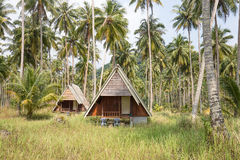 Overgrown tropical bungalows in the jungle on island Koh Kood, Thailand Stock Photo