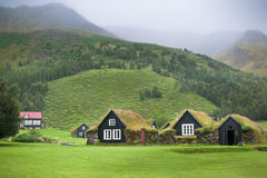 Overgrown Typical Rural Icelandic Houses Royalty Free Stock Photography