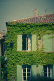 Overgrown wall of residential building facade Royalty Free Stock Image