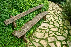 Overgrown weathered wooden bench,paved garden path Stock Photo