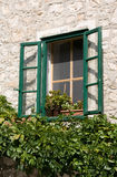 Overgrown Window stock photos