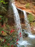 Overhanging Double Falls. Zion National Park Royalty Free Stock Photography