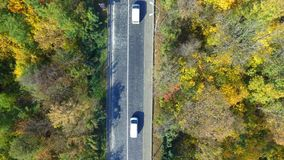 Overhead aerial top view over car travelling through colorful forest. Aerial Flight over the road between fields. Overhead aerial top view over car travelling stock video footage