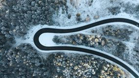 Overhead aerial top view over car travelling on hairpin bend turn road in mountain winter snow covered forest. White. Pine tree woods. Snowy street path stock footage