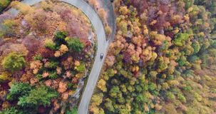 Overhead aerial top view over car travelling on road in colorful autumn forest.Fall orange,green,yellow red tree woods. Overhead aerial top view over car stock video