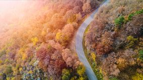 Overhead aerial top view over curve road bend in colorful countryside autumn forest.Fall orange,green,yellow,red tree Royalty Free Stock Images
