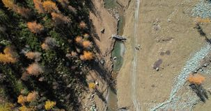 Overhead aerial top view over forest woods creek and two hikers walking in sunny autumn.Alps outdoor colorful nature. Scape mountains wild fall people trekking stock video