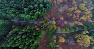 Overhead aerial top view over hairpin bend turn road in countryside autumn forest.Fall orange,green,yellow red pine tree. Woods.Fog Street path establisher.4k stock video footage