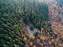 Overhead aerial top view over hairpin turn road bend in countryside autumn pine forest.Fall orange,green,yellow,red tree. Woods.Mountain curve street path royalty free stock photography