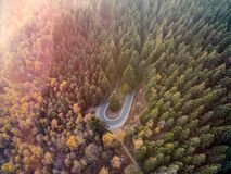 Overhead aerial top view over hairpin turn road bend in countryside autumn pine forest.Fall orange,green,yellow,red tree. Woods.Mountain curve street path stock images