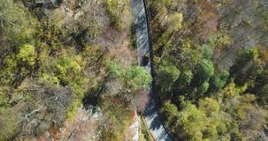 Overhead aerial top view over yellow vintage car travelling on road in colorful autumn forest.Fall orange,green tree