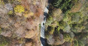 Overhead aerial top view over yellow vintage car travelling on road in colorful autumn forest.Fall orange,green tree. Overhead aerial top view over yellow car stock video