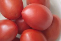 An overhead and close fresh tomatoes, white background royalty free stock photography
