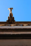 Overhead gargoyle Royalty Free Stock Images