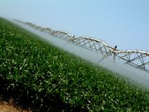 Overhead Irrigation. Large scale overhead irrigation Royalty Free Stock Photography