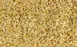 Overhead macro shot of uncooked raw brown rice background. Texture Royalty Free Stock Image