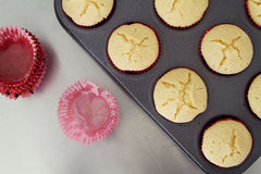 Overhead od cupcakes cooling with used patties Stock Photography