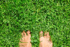 Overhead photo of feets on grass background. Stock Image