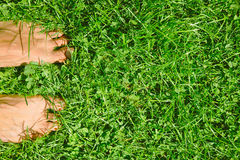 Overhead photo of feets on grass background. Royalty Free Stock Photography