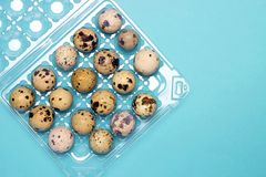 An overhead photo of small quail eggs in the transparent plastic container on the blue background. Stock Photos
