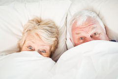 Overhead portrait of couple hiding in blanket Royalty Free Stock Images