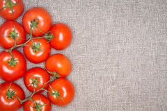 Overhead of Red Ripe Tomatoes on the Vine Stock Photos