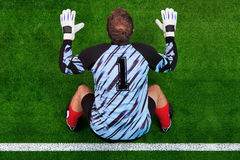 Overhead shot of a goalkeeper on the goal line royalty free stock image