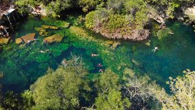 An overhead shot of the jungle and the El Jardin del Eden cenote filled with swimmers. An overhead shot of the jungle and the El Jardin del Eden cenote filled stock video footage