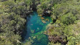 An overhead shot of the jungle and the El Jardin del Eden cenote filled with swimmers. An overhead shot of the jungle and the El Jardin del Eden cenote filled stock video
