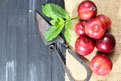 Overhead shot of Red Cherry plums Royalty Free Stock Images