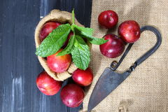 Overhead shot of Red Cherry plums Royalty Free Stock Photo