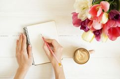 Overhead shot of woman hands drawing, writing with pencil in open notebook, drinking coffee on white wooden table. Beautiful tulip. Flowers bouquet of different royalty free stock image
