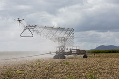 Overhead Spray Irrigation Equipment Stock Photos