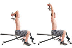 Overhead Triceps Extension Stock Images