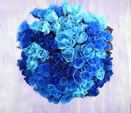 An overhead view of a bunch of 80 blue roses in a circular shape Royalty Free Stock Images
