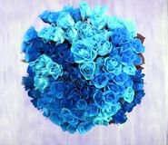 An overhead view of a bunch of 80 blue roses in a circular shape Royalty Free Stock Photo