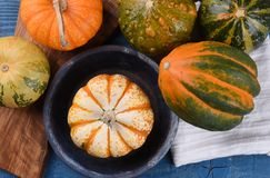 Overhead view of decorative gourds, squash and pumpkins stock photography