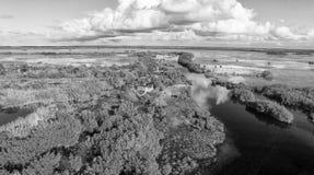 Overhead view of Everglades swamp, Florida - USA Stock Photo